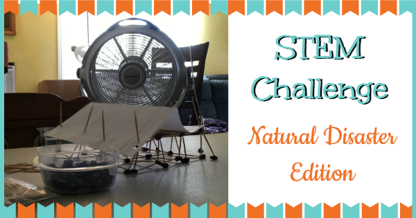 STEM Challenge Natural disaster edition
