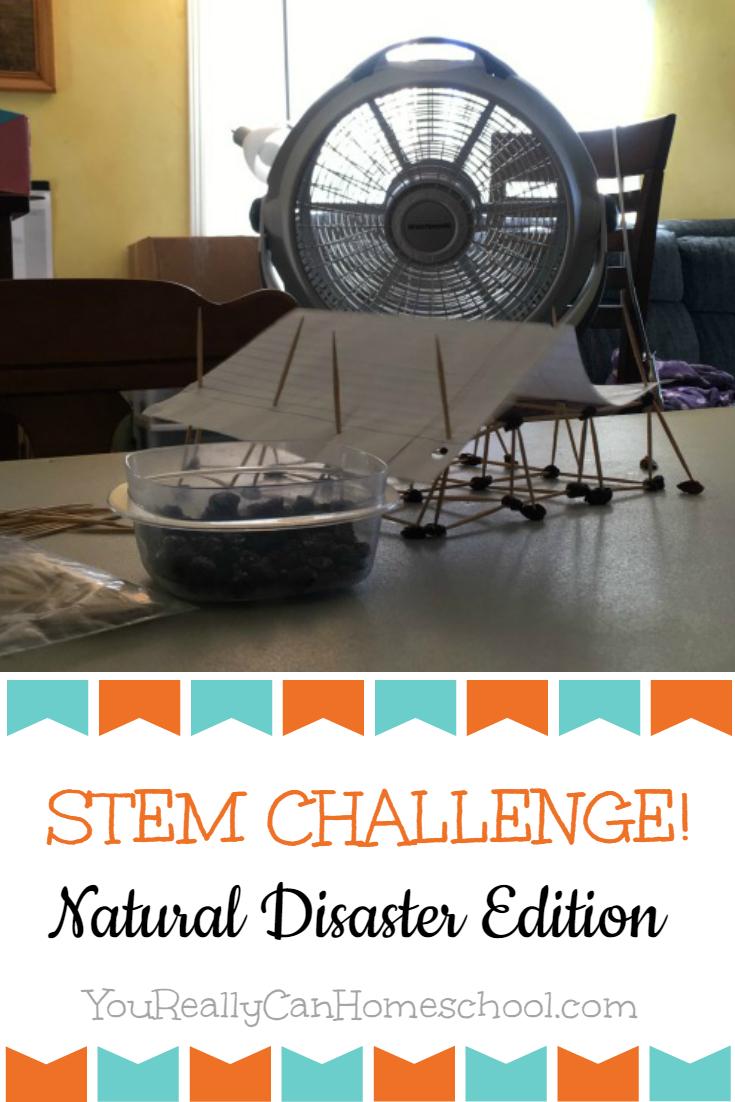 Stem Challenge: Withstanding a Hurricane YouReallyCanHomeschool.com
