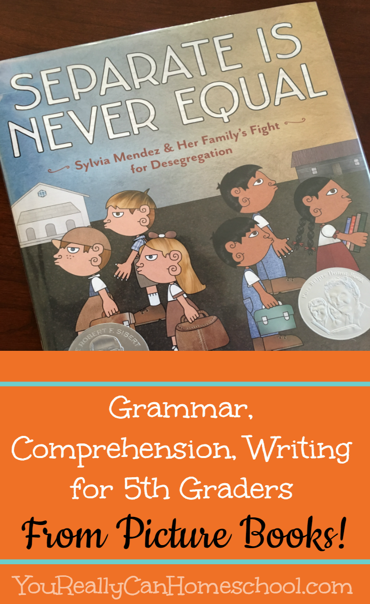 Grammar, Comprehension and writing lessons for 5th graders all from picture books! YouReallyCanHomeschool.com