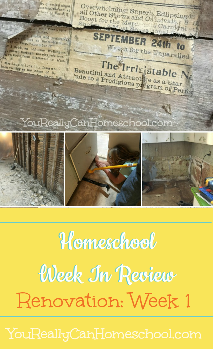 What a week it's been, homeschooling through a kitchen renovation is harder and easier than I expected. There were so many homeschool STEM lessons I never could have planned. It's dirty and dusty but boy did we learn a lot this week! http://YouReallyCanHomeschool.com