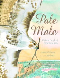Pale Male Citizen Hawk of New York City and 19 more picture books for 5th graders