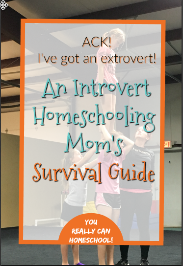 Introvert Homeschool Mom's survival guide