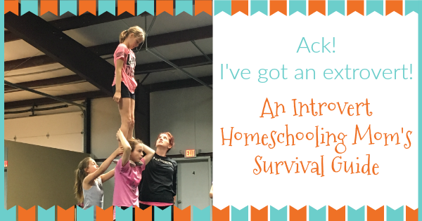 introvert homeschool mom survival guide